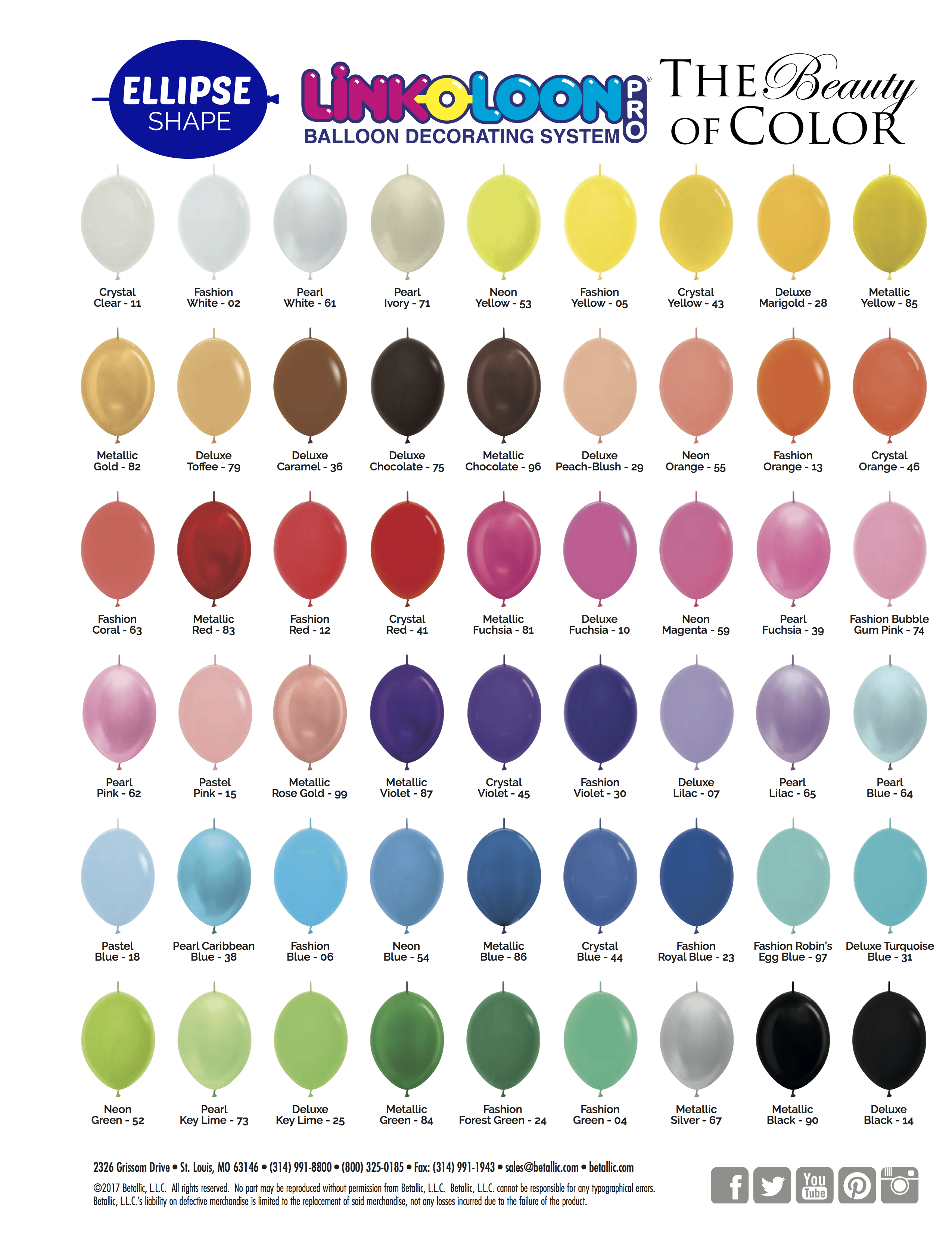 Color And Size Chart Life O The Party