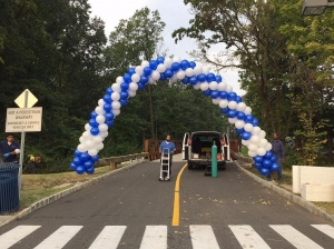 Packed Balloon Arch, Balloon Arch, Outdoor Balloons